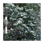 Nieve en un árbol de acebo pizarras