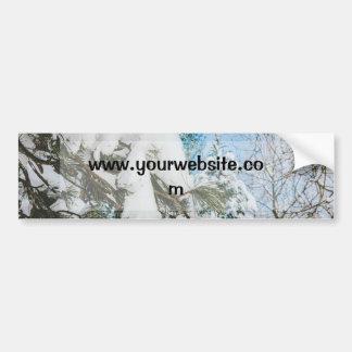 Nieve en un helecho cielo azul