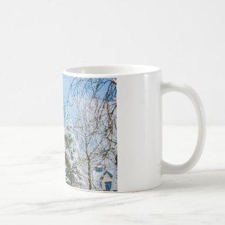 Nieve en un helecho, cielo azul taza