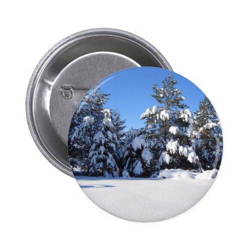 Nieve fresca en árboles de pino