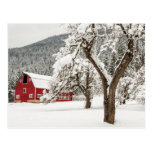 Nieve fresca en granero rojo postales