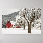 Nieve fresca en granero rojo póster