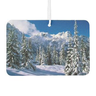 Nieve Freshner-Alpina del aire