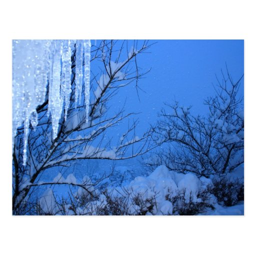 Nieve - invierno tarjeta postal