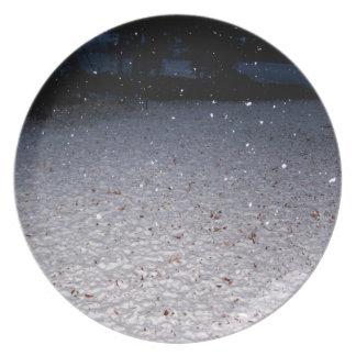 Nieve meridional platos