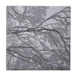 Nieve pegajosa pegada a las ramas azulejo