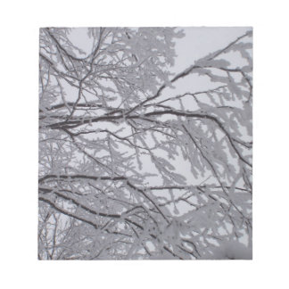 Nieve pegajosa pegada a las ramas blocs