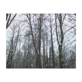 Nieve por todas partes lona estirada galerías