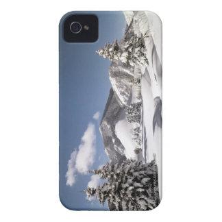 Nieve recientemente caida funda para iPhone 4