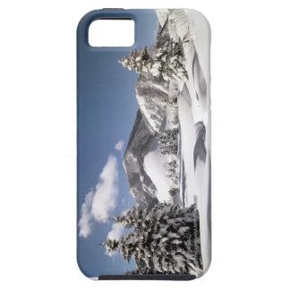 Nieve recientemente caida funda para iPhone SE/5/5s