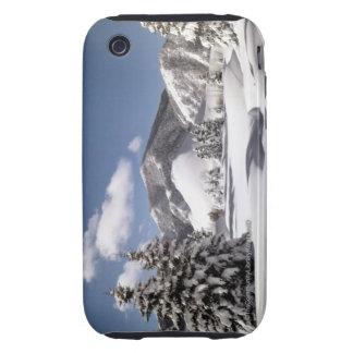 Nieve recientemente caida funda though para iPhone 3