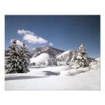 Nieve recientemente caida impresiones fotográficas