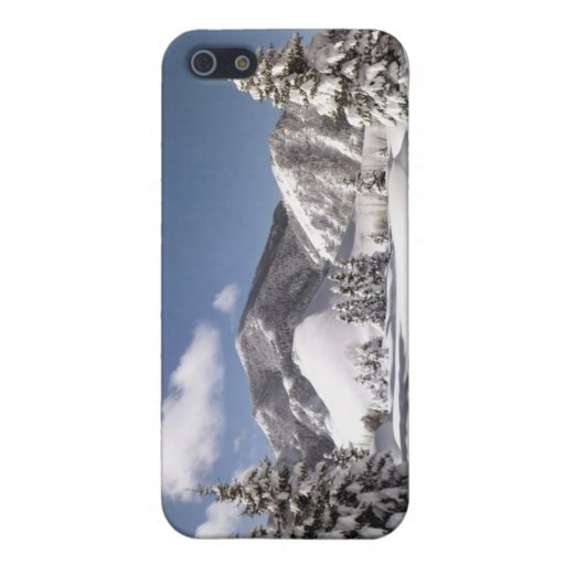 Nieve recientemente caida iPhone 5 carcasas