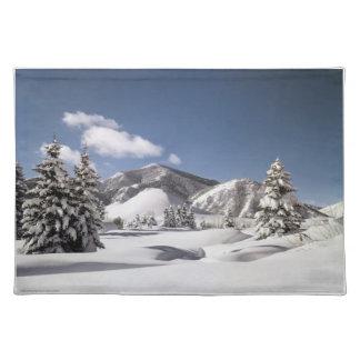 Nieve recientemente caida mantel individual