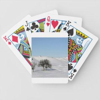 Nieve Scape de la escena del invierno Barajas