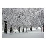 nieve tarjetas de visita