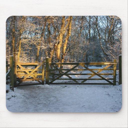 nieve y cojín de ratón de la luz del sol tapetes de ratones