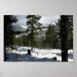 Nieves en asta de bandera en Arizona y en Mt. Elde Poster