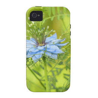 Nigelle, if beautiful! Case-Mate iPhone 4 cases