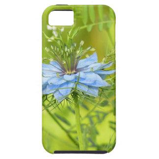 Nigelle, if beautiful! iPhone SE/5/5s case