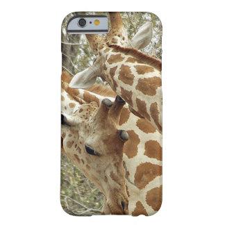 Niger, Koure, dos jirafas en arbustos en el oeste Funda De iPhone 6 Barely There