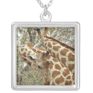 Niger, Koure, two Giraffes in bushes in the west Square Pendant Necklace