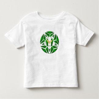 Nigeria Super Eagles soccer ball Naija flag gifts T-shirt