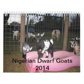 nigerian dwarf goat 2014 calender calendars