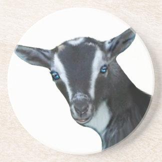Nigerian Dwarf Goat Sandstone Coaster