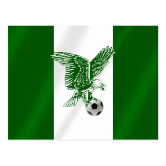 Nigerian Super Eagles flag of Nigeria Postcard