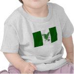Nigerian Super Eagles flag of Nigeria Tshirt