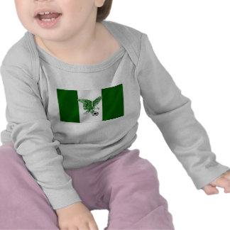 Nigerian Super Eagles flag of Nigeria Shirts