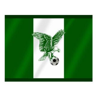 Nigerian Super Eagles soccer flag of Nigeria Postcard