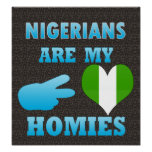 Nigeriens are my Homies Poster