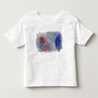 Night and Day, 1908-11 Toddler T-shirt
