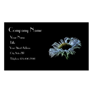 Night Aster Business Card