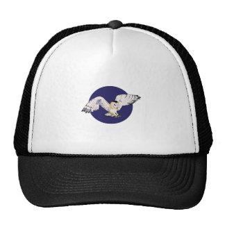 NIGHT BARN OWL HAT
