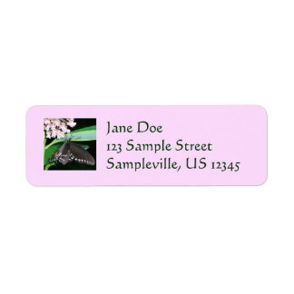 Night Butterfly Black Swallowtail Nature Photo Label