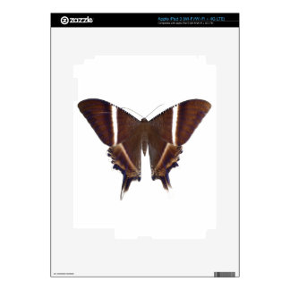Night Butterfly Skin For iPad 3
