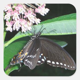Night Butterfly Sticker