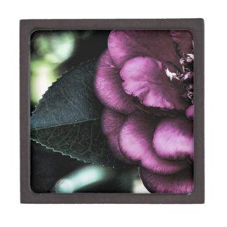 Night Camellia Premium Gift Boxes