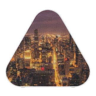 Night cityscape of Chicago Speaker