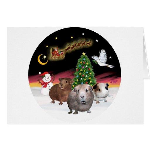 Night Flight - 3 Guinea Pigs Greeting Card