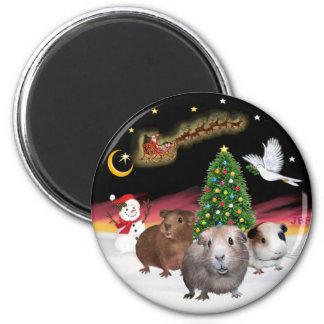 Night Flight - 3 Guinea Pigs Magnet