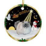 Night Flight - Himalayan Christmas Tree Ornament