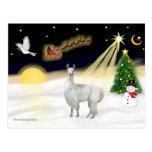 Night Flight - Llama 12 Postcard