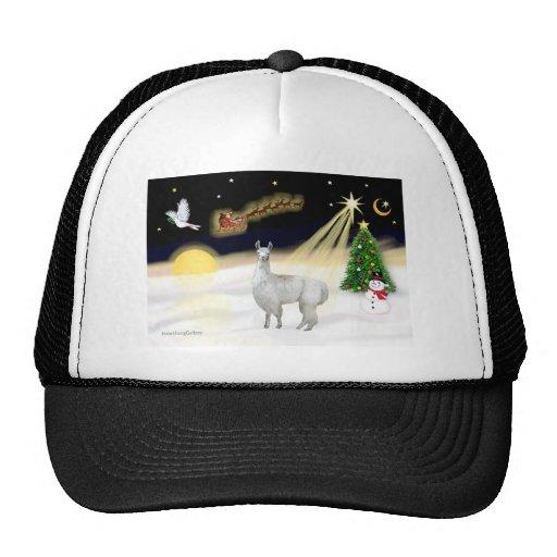 Night Flight - Llama 12 Trucker Hat