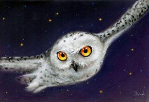 bird snowy owl laptop skins decals zazzle