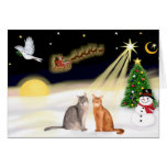Night Flight - Two Abyssinian cats Card