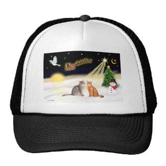 Night Flight - Two Abyssinian cats Trucker Hats